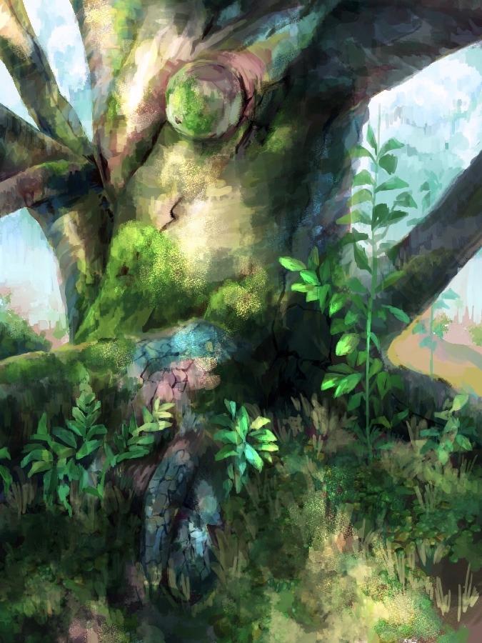 長老さまの木