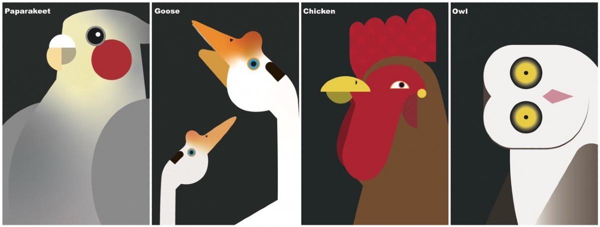 牧場鳥シリーズ④種
